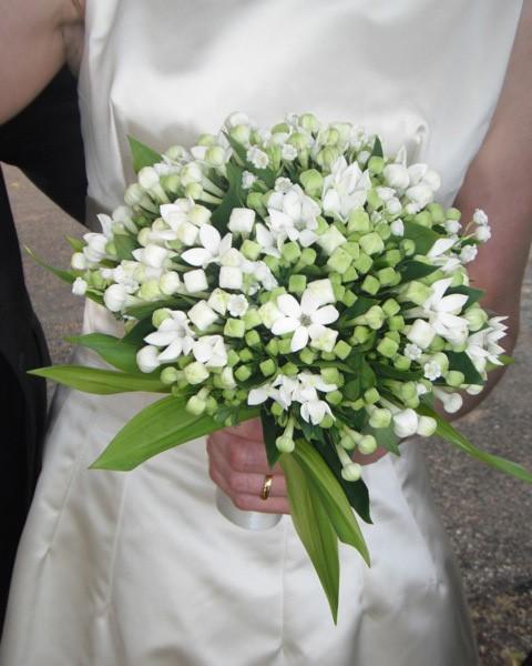 Image result for Jasmine Flower bouquet