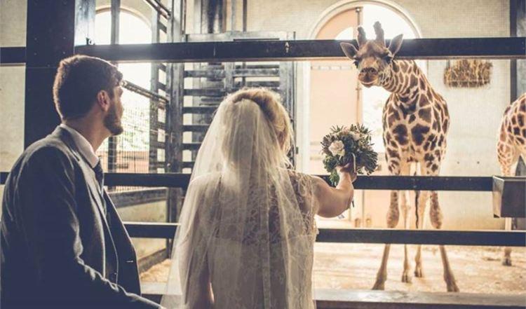 london-zoo-wedding-venue