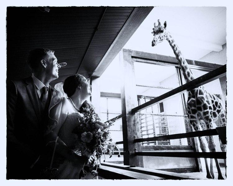 zsl-weddings